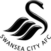SWANSEA CITY BOOKS