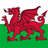 Wales Badges