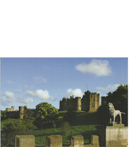 Alnwick Lion, Northumberland (Greeting Card)