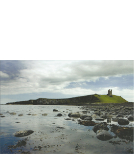 Dunstanburgh Castle, Northumberland (Greeting Card)