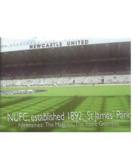 Newcastle St James' Park (Fridge Magnet)