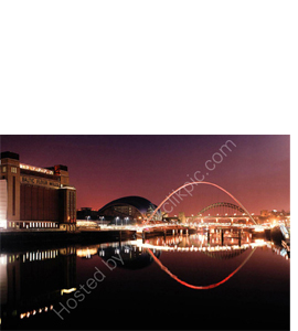 Tyne & Millennium Bridges, The Baltic, Sage (Greeting Card)