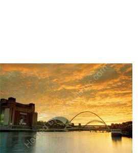Tyne & Millennium Bridges, The Sage & Baltic (Greeting Card)