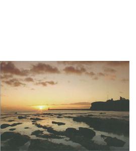 Tynemouth, Pier and Priory, Tyneside (Greeting Card)