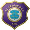 FC ERZGEBIRGE AUE BOOKS