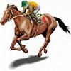 HORSE RACING DVDs