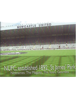 Newcastle St James' Park (Fridge Magnet)