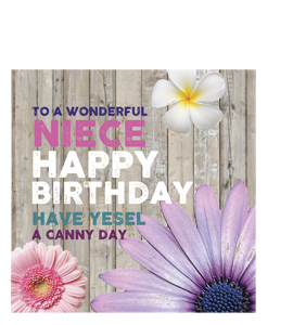 To A Wonderful Neice. Happy Birthday (Greetings Card).